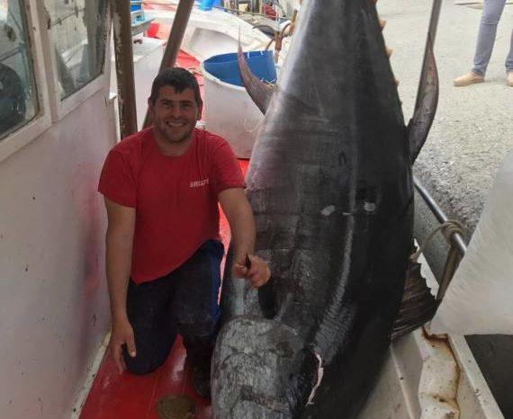 Τόνος 350 κιλών ψαρεύτηκε στην Εύβοια !