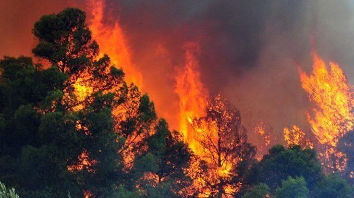 Φωτιά στον Άγιο.«Συναγερμός» στην Πυροσβεστική