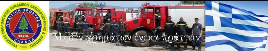 «Σύλλογος εθελοντών πυροσβεστών: Οι αφανείς μας ήρωες» 3 7