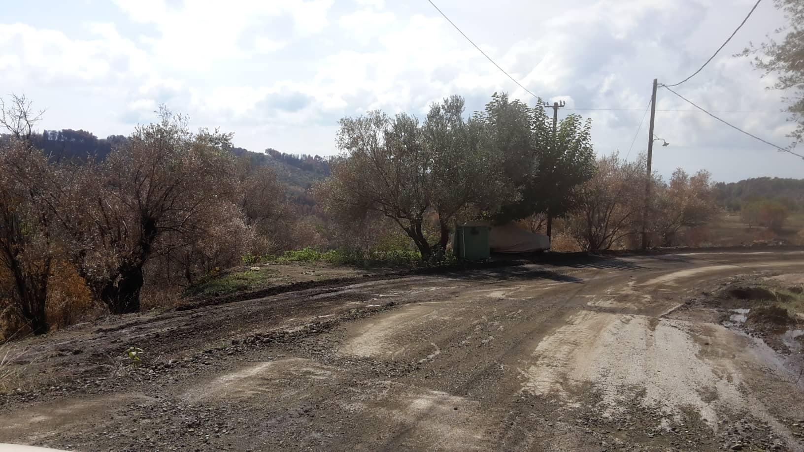 Σταυρός:  «Ξηλώθηκε» ο δρόμος από την βροχή (φωτογραφίες) 41664779 663245064048142 1184847508346503168 n