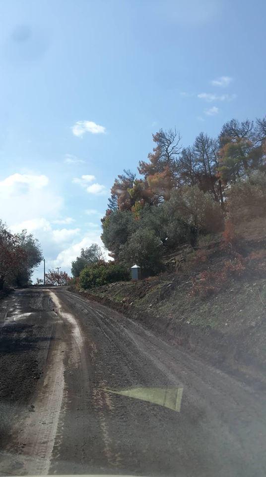 Σταυρός:  «Ξηλώθηκε» ο δρόμος από την βροχή (φωτογραφίες) 41680165 1744930088939063 3346871768127111168 n
