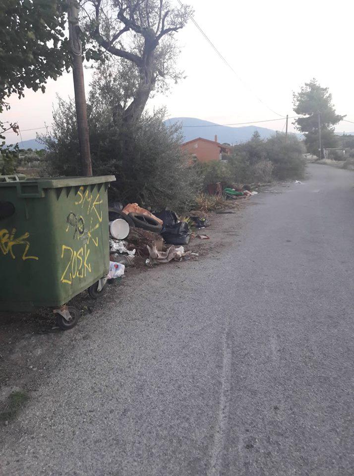 Πολιτικά: Οι κάτοικοι παραπονιούνται ότι ο Δήμος αργεί να μαζέψει τα σκουπίδια 42116639 439763656430917 2315556704818823168 n