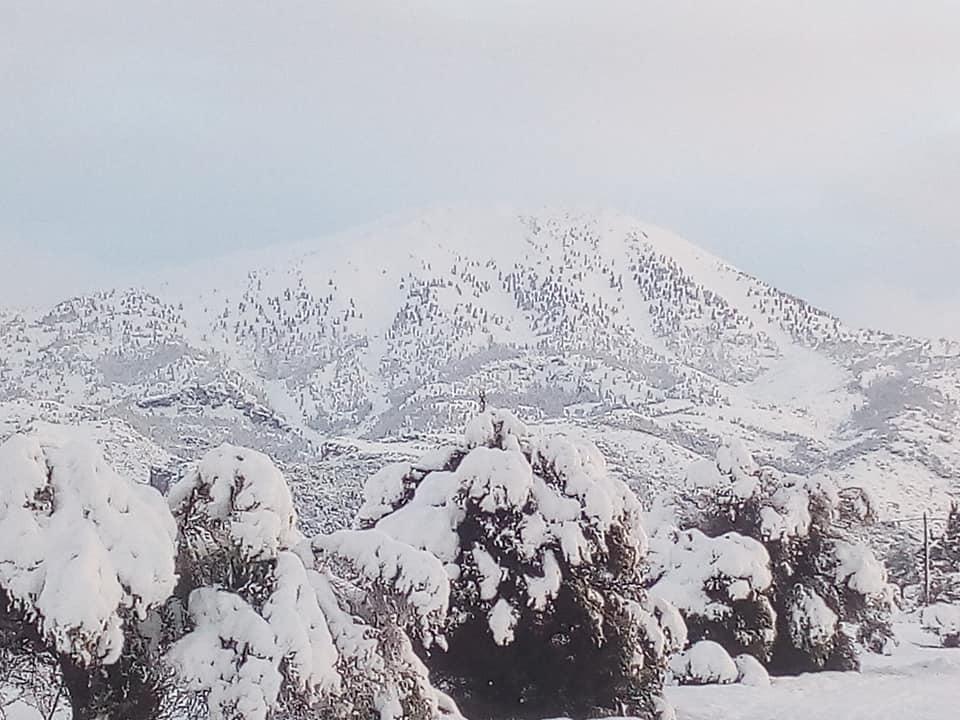 Η χιονισμένη Δίρφυ (φωτογραφίες-video) 49348687 2543179335707350 5554169961074655232 n