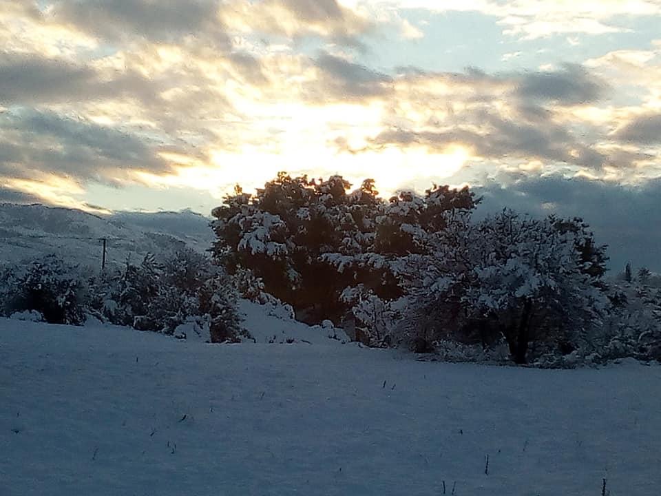 Η χιονισμένη Δίρφυ (φωτογραφίες-video) 49661467 2543179395707344 3088373771233394688 n