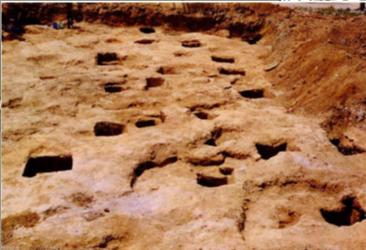 «Ο πρωτοελλαδικός οικισμός της Μάνικας στη Χαλκίδα» 2