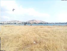 «Ο πρωτοελλαδικός οικισμός της Μάνικας στη Χαλκίδα» 5