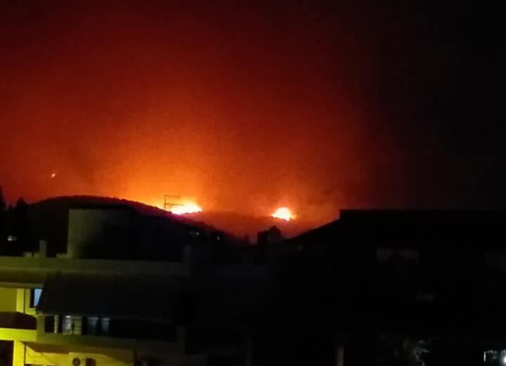 Φωτιά στο Καστρί: Κάηκαν 7.000 νεοσσοί