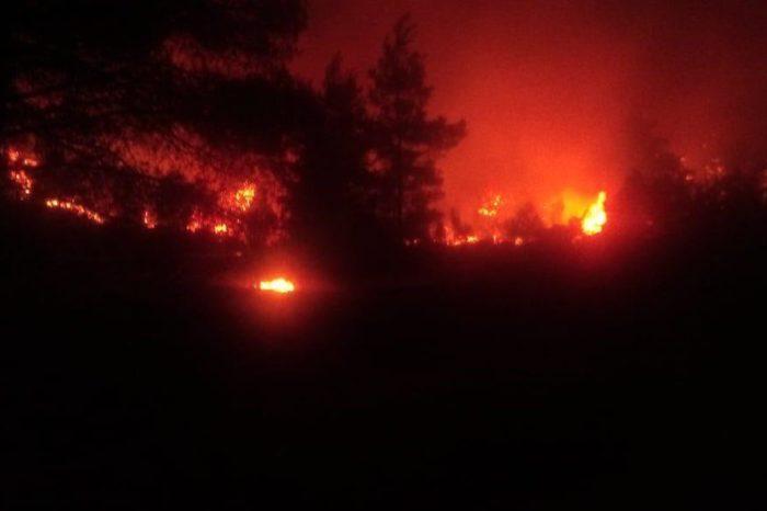 Φωτιά στην Μακρυμάλλη