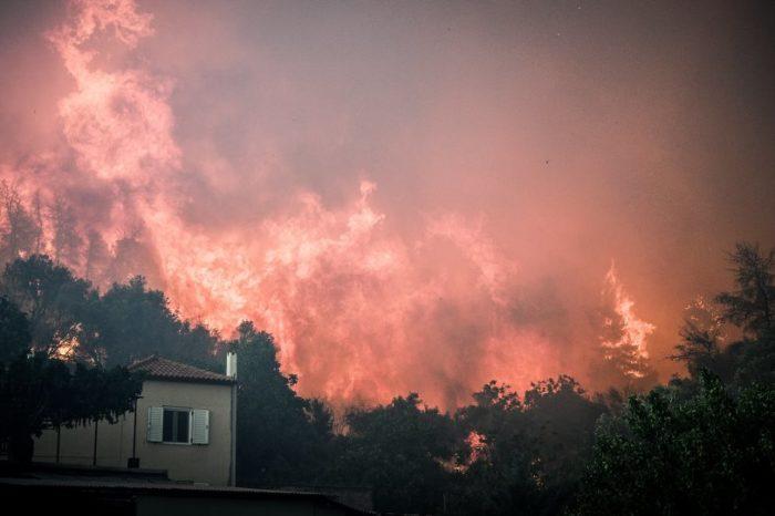 Εκπολιτιστικός σύλλογος Μακρυμάλλης:  « Στην φωτιά δεν λειτούργησαν όλα καλά και η καταστροφή πήρε μεγάλη έκταση» !