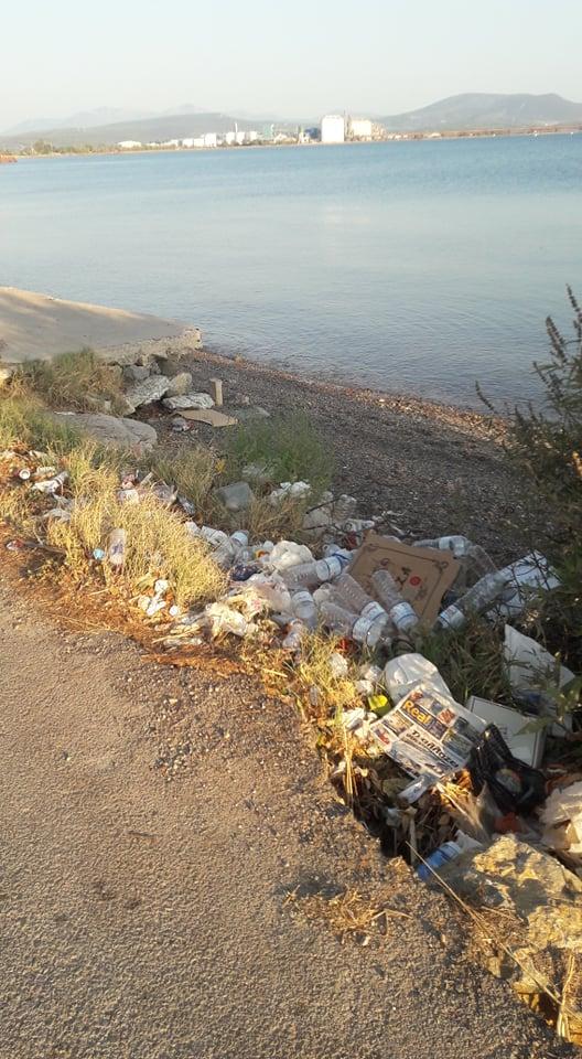 Σκουπιδότοπος η παραλία στα Βρυσάκια 3