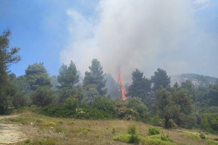 Φωτιά  στο Κυπαρίσσι
