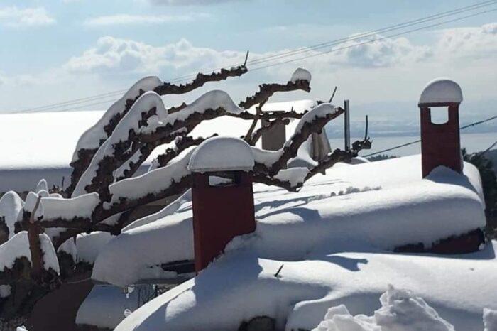 Ο χιονισμένος Σταυρός Ευβοίας μέσα από 46 όμορφες  φωτογραφίες