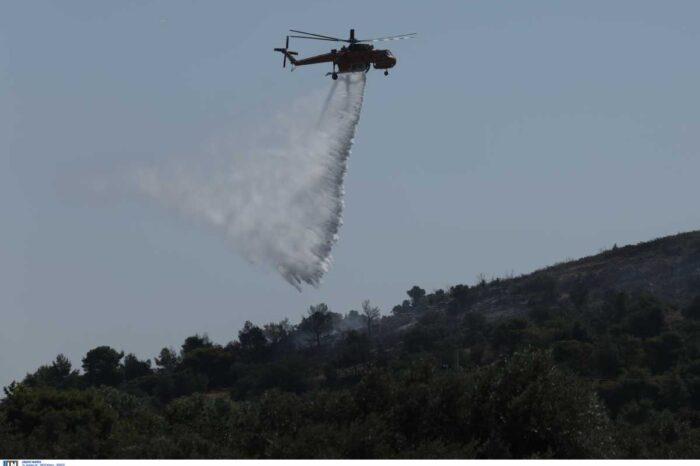 Φωτιά στην Σταμάτα Αττικής – Κοντά στα σπίτια οι φλόγες, εκκενώνεται ο οικισμός «Γαλήνη»